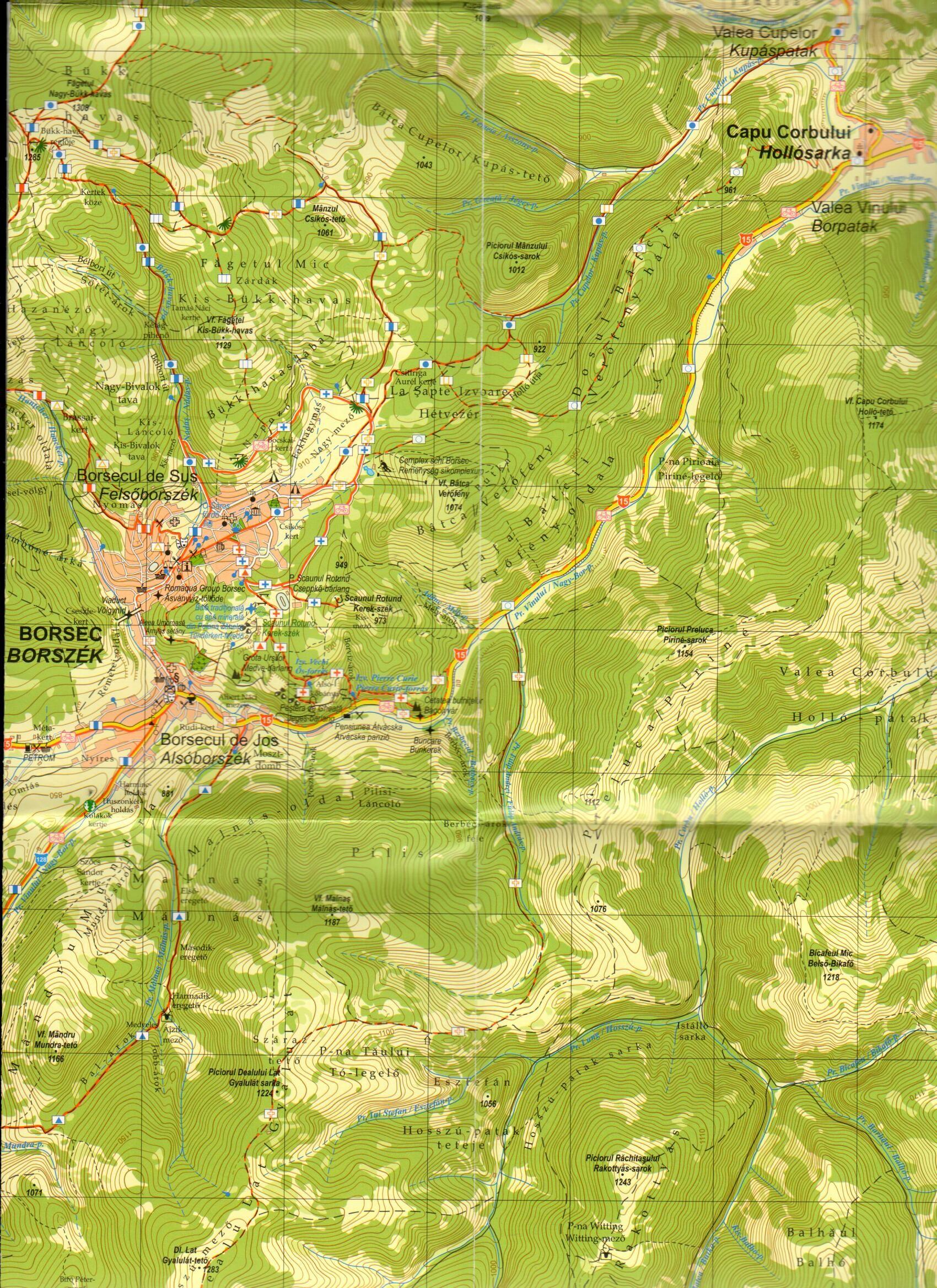 Borsec and surroundings sample map