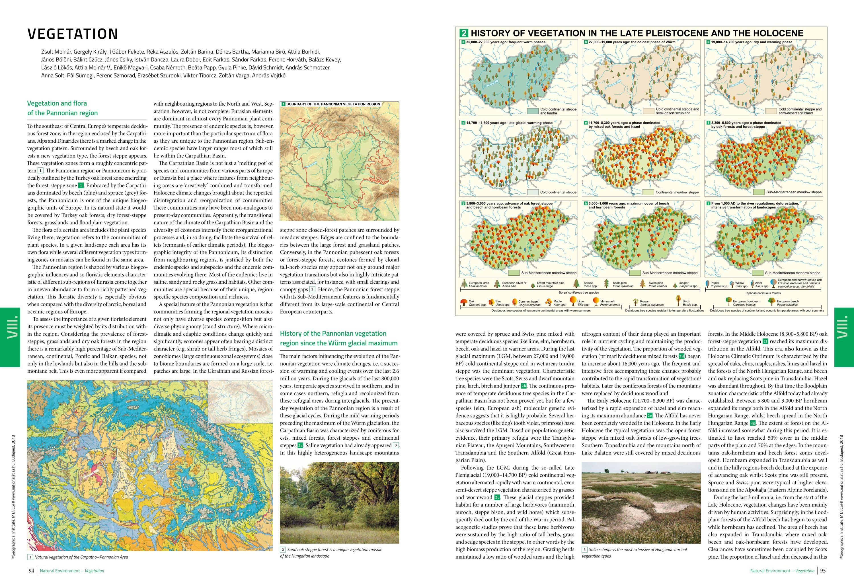 MNA 2. kötet angol: mintaoldal flora