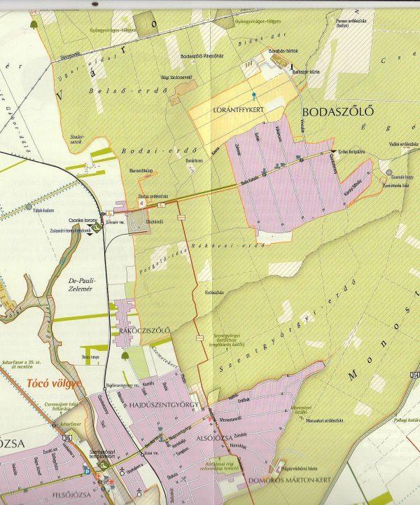 Debrecen-Nagyerdő: mintakivágat
